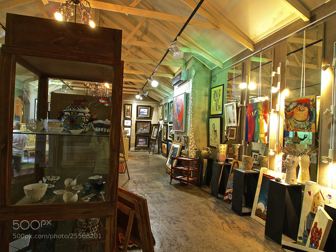 Photograph art gallery 1 by Danny du Plessis on 500px