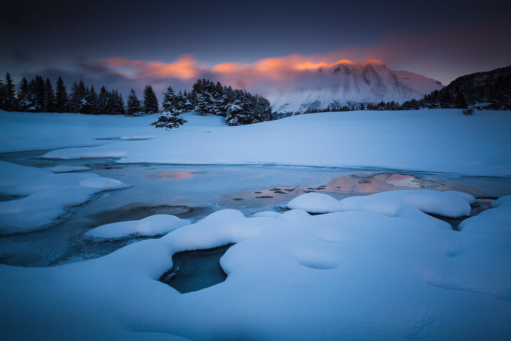Photograph Warm blue by Michel Delli on 500px