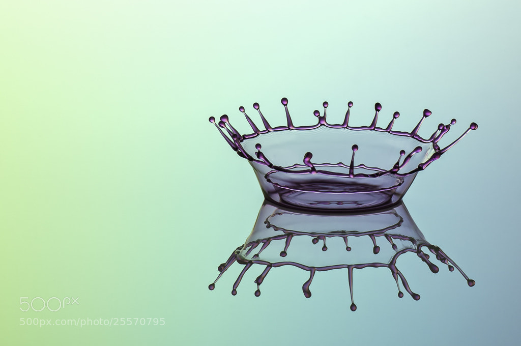 Photograph crown in crown by Michael Eggers on 500px