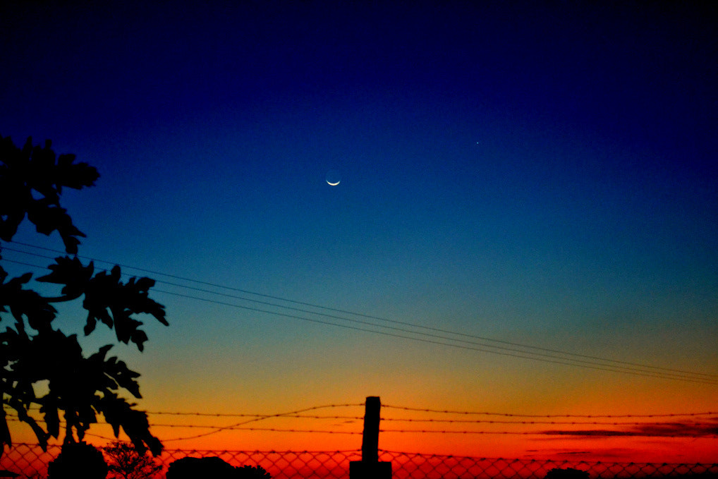 Photograph moon on the horizon by Anne Cazari on 500px