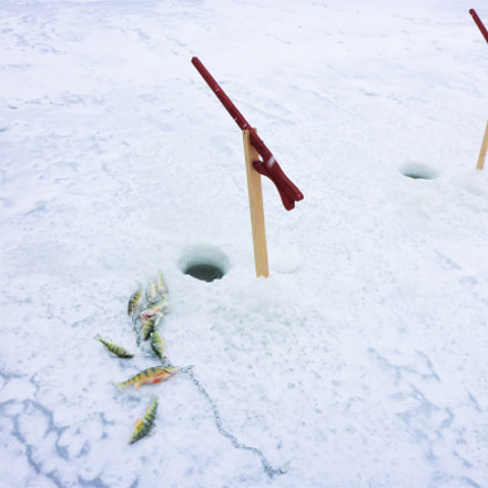 Ice-Fishing Competition, Panasonic DMC-TS5