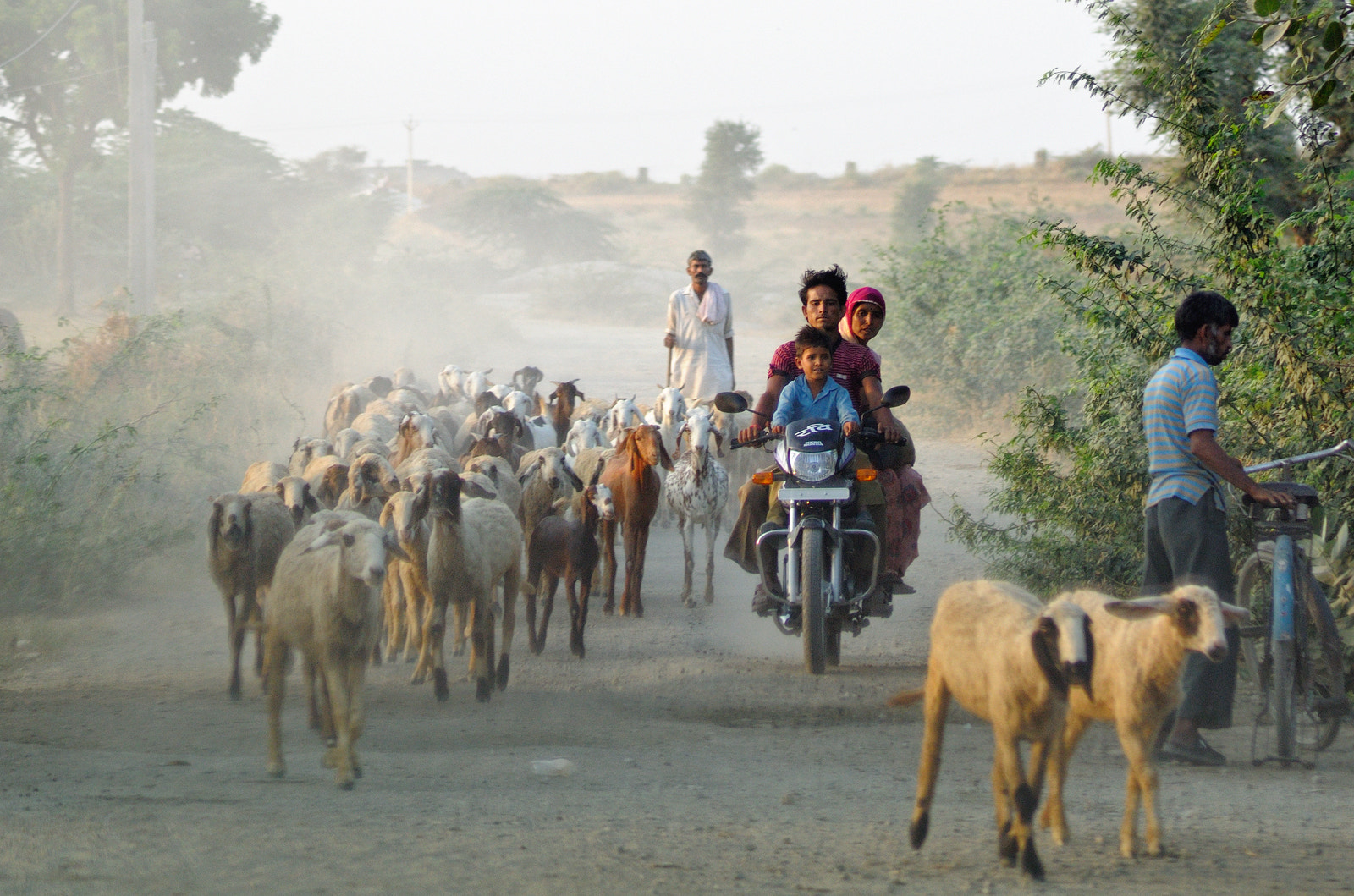 Photograph Going Home by saptak ganguly on 500px