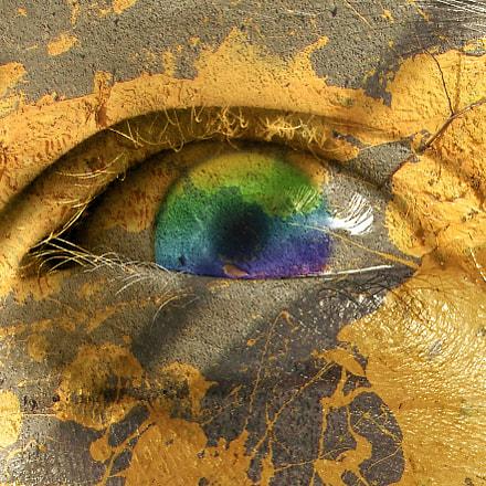 Rainbow Eye, Fujifilm FinePix S9600