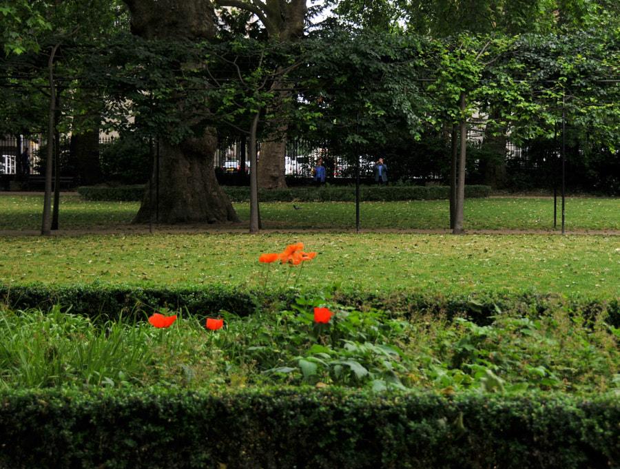 Bloomsbury, Russel Sq, London by Sandra on 500px.com