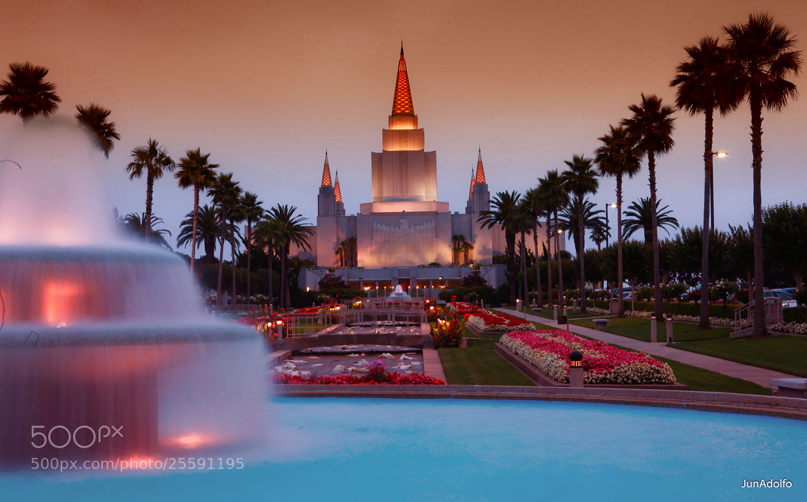 Photograph Oakland Mormon Temple by Celso Adolfo on 500px
