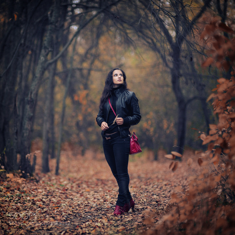 Photograph autumn... by Oleg Stepanov on 500px