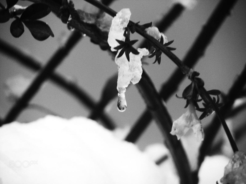 Photograph L'acqua si crea e si distrugge, i ricordi no. by Simone Rossi on 500px