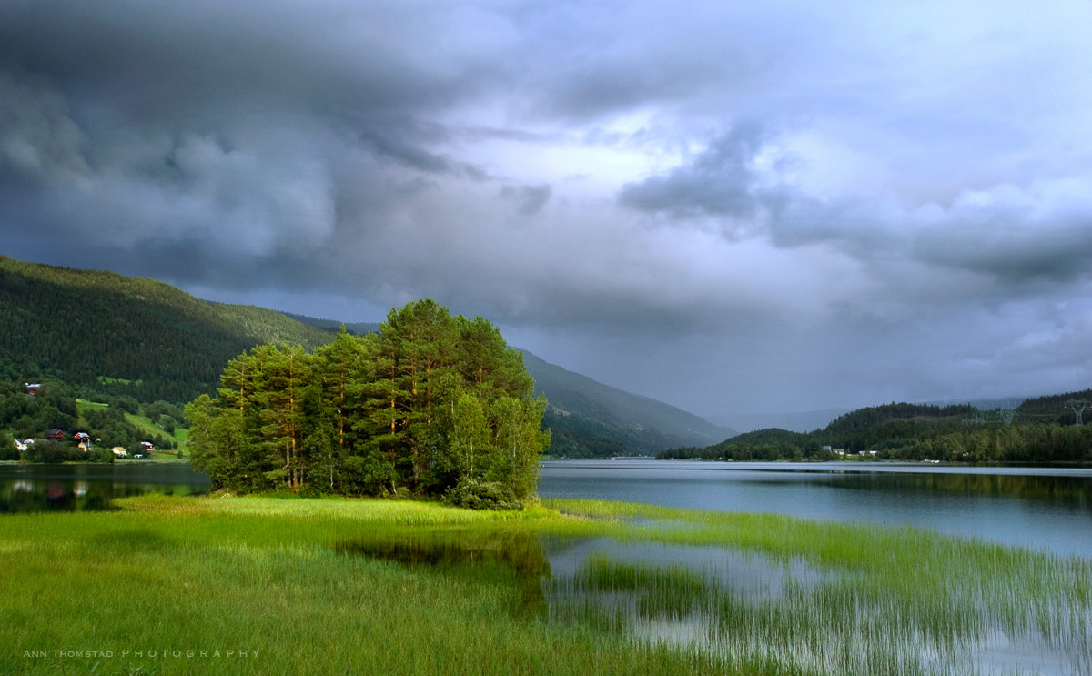 Photograph Summer Rain by Ann Thomstad on 500px
