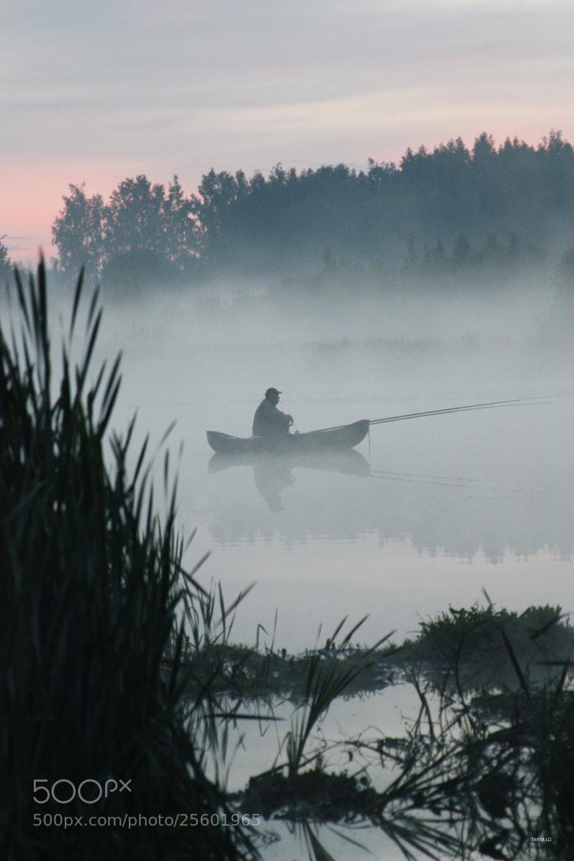Photograph туман by Tanya Lo on 500px