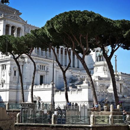 Roma: Dettagli..., Canon IXUS 255 HS
