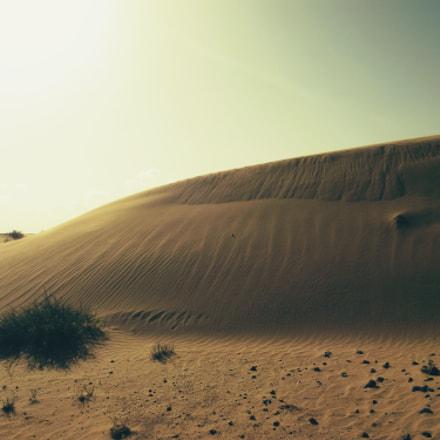 dunes, Fujifilm FinePix S1600