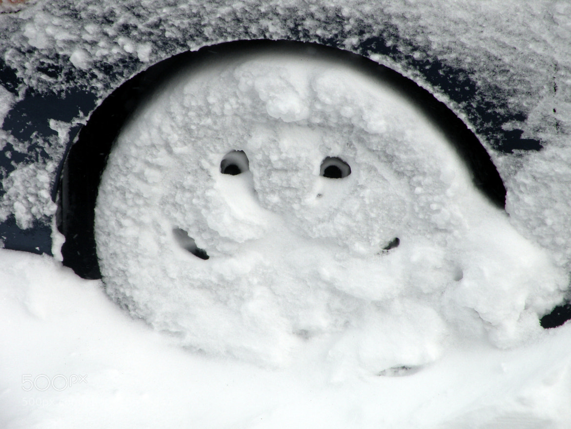 Photograph Tire laughing at the Blizzard of 2013 by Jay Santos on 500px