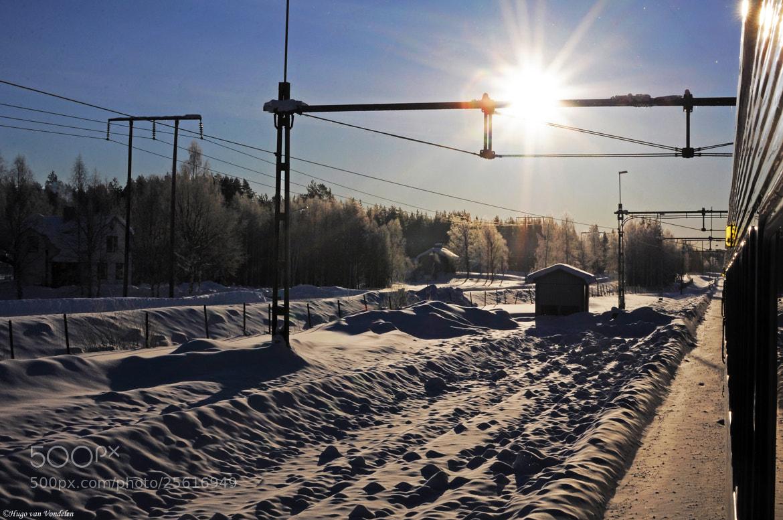 Photograph Arctic Sun by Hugo van Vondelen on 500px