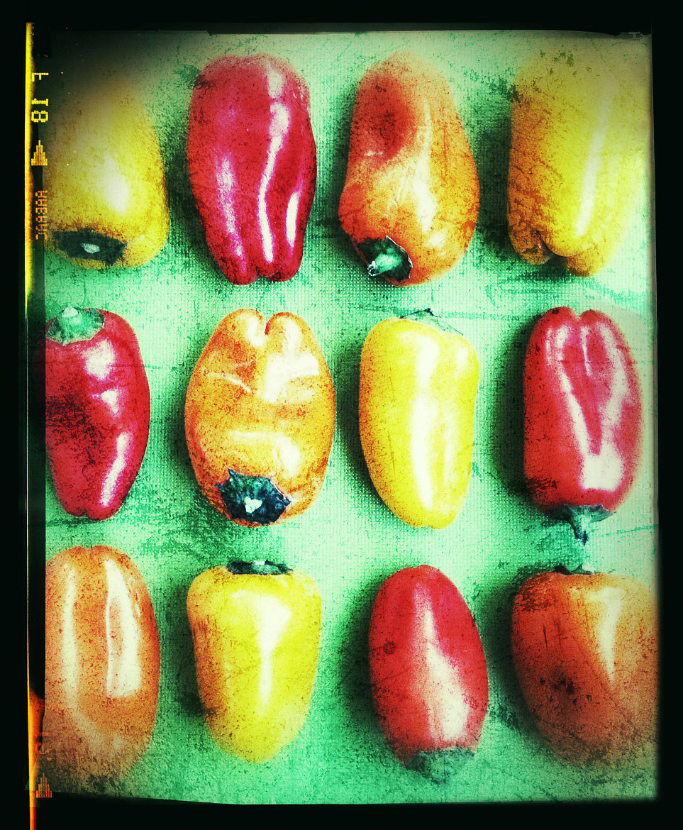 Photograph Peppers by Julie Rideout on 500px