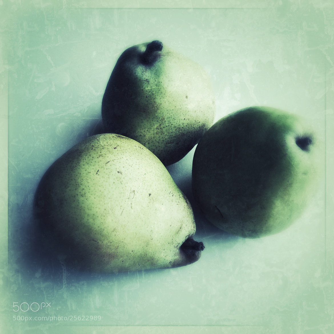 Photograph Trio of Pears by Julie Rideout on 500px