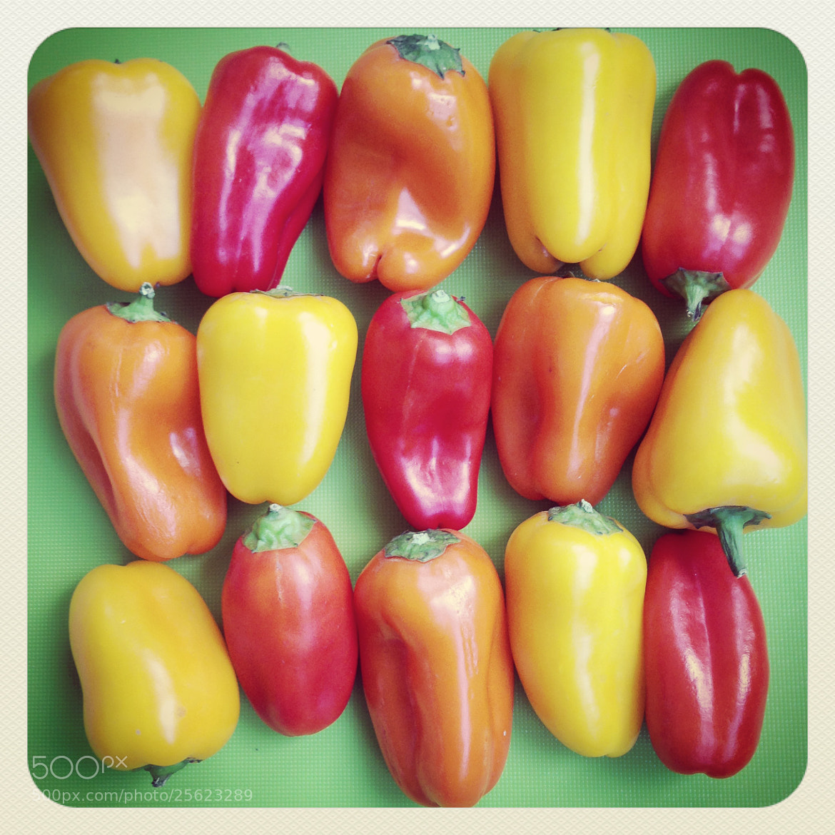 Photograph Retro Peppers by Julie Rideout on 500px