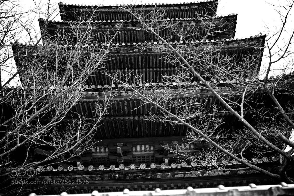 Photograph Five-story pagoda by Yayoi Takeda on 500px