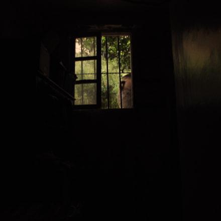 window, Nikon D90, Sigma 18-200mm F3.5-6.3 DC