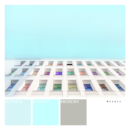 Mosaic+, Fujifilm FinePix F770EXR