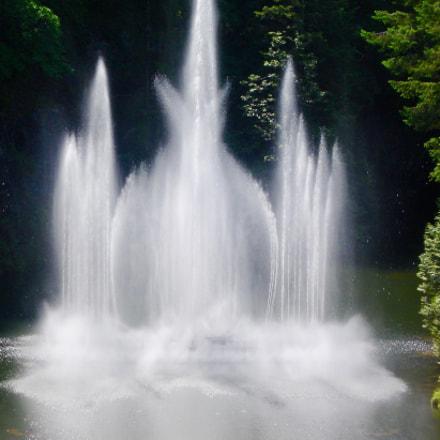 Fountain , Sony DSC-W17