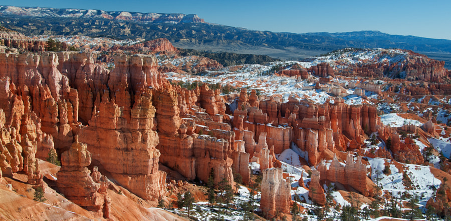 """Bryce Canyon National Park, in southwestern Utah, is characterized by hundreds of rock formations called """"hoodoos"""". Hoodoos are columns of eccentrically shaped rock, produced by differential weathering. Geologists estimate that the hoodoos of Bryce Canyon were formed about 60 million years ago.   The Paiute Indians have a more fanciful explanation regarding the hoodoos. According to Paiute mythology, before there were any Indians, the Legend People lived in Bryce Canyon. For some reason the Legend People were bad. Because they were bad, they were turned into stone, where they can be seen to this day.  Some are standing in rows, some sitting down, and some holding onto others. You can still see their faces, with paint on them just as they were before they became rocks. This story became famous in 1936, when a Paiute elder nicknamed Indian Dick retold the legend to a park naturalist. The legend is displayed today in the Bryce Canyon Visitor Center.   Best viewed on black background."""