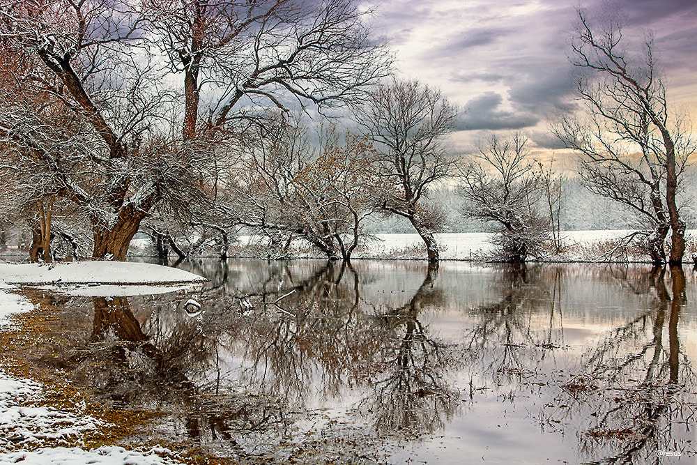 Photograph River Zagyva by F Levente on 500px