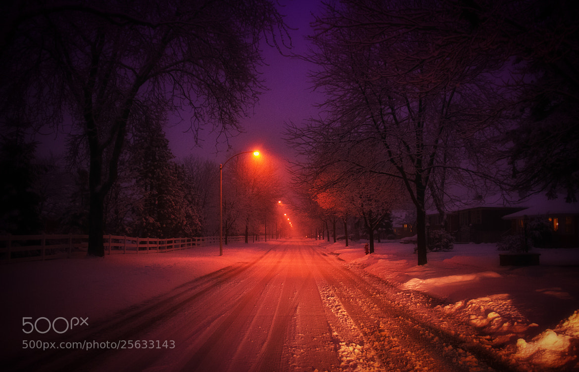 Photograph Night in white by Tatiana Avdjiev on 500px