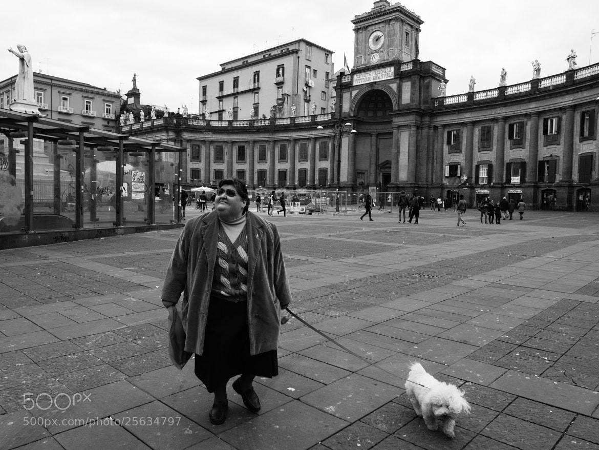 Photograph my dog by Mario Mancuso on 500px