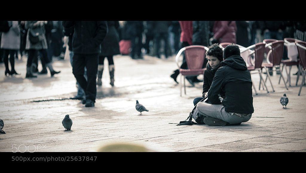 Photograph Pigeons by laura  malucchi on 500px