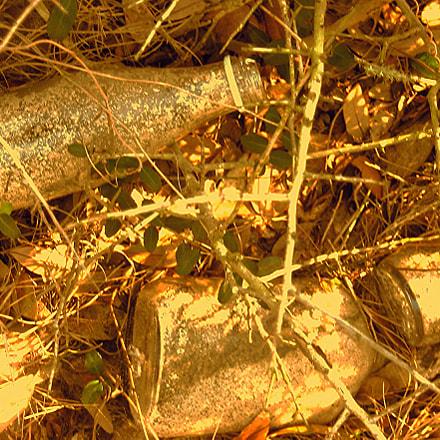 Jekyll glass, Canon POWERSHOT SD1000