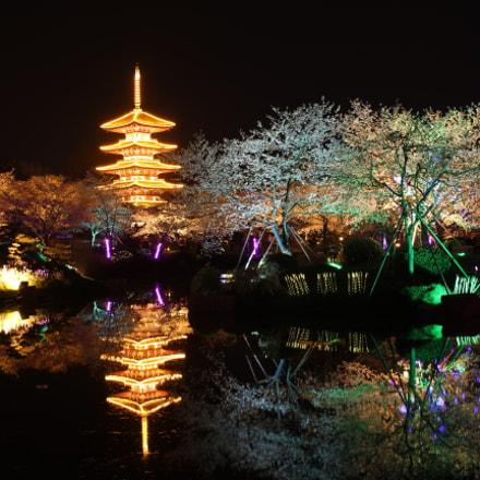 Moshan Sakura Garden, Canon EOS KISS X6I, Canon EF-S 24mm f/2.8 STM