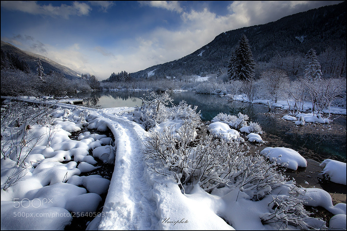 Photograph Winter Morning At Zelenci by Jaro Miščevič on 500px