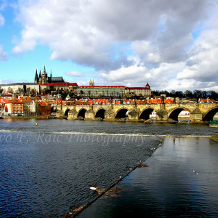 Charles Bridge and Prague, Nikon E8800