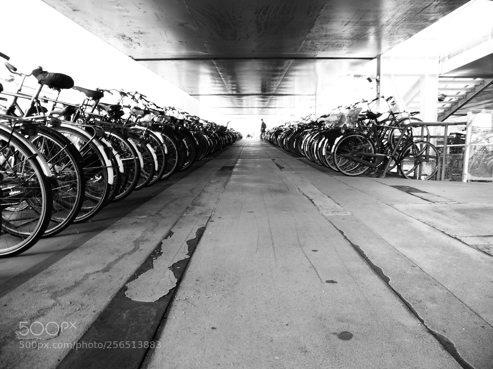 Bikes Parking photography