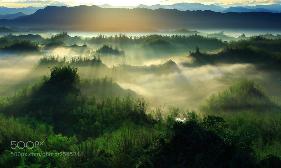 Photograph The beauty of Taiwan Erliao diffuse light  二寮之美 by 盧 宗彬 on 500px