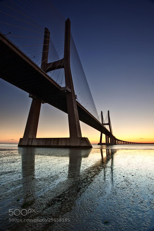 Photograph Vasco De Gamma Bridge by Brendan O Neill on 500px