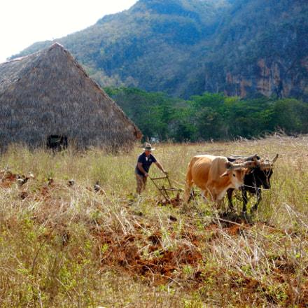 Farmer In The Field, Nikon COOLPIX AW130