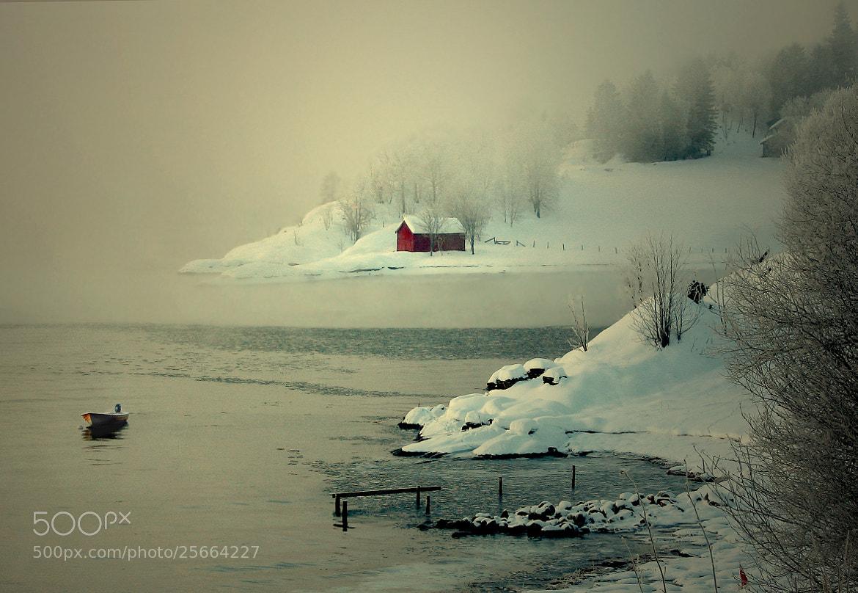 Photograph Days of Winter. by Kent Lennart Vassdal on 500px