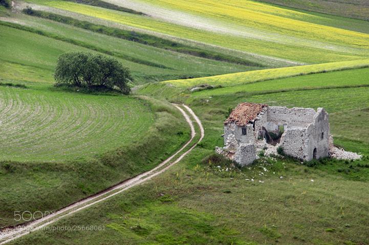 Photograph Farmhouse remains by Gianluca Cenacchi on 500px