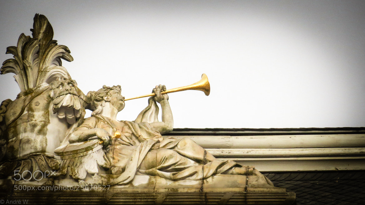 Photograph Trumpet Woman on Top of the Roof by Andre W on 500px