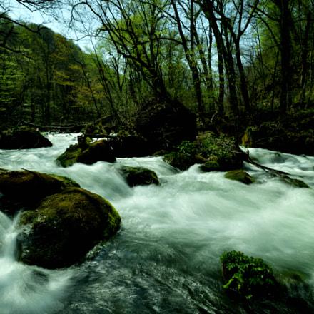 stream, Nikon D850, AF-S Nikkor 18-35mm f/3.5-4.5G ED