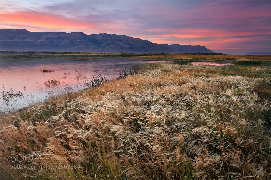 Photograph Hart Land by Sean Bagshaw on 500px