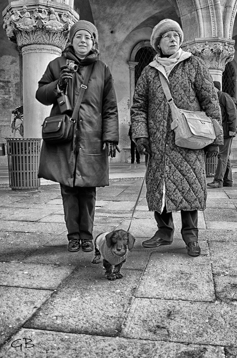 Photograph walking with Dasy by lapococa on 500px