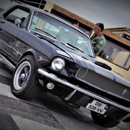 Mustang..., Nikon D60, AF-S DX VR Zoom-Nikkor 18-105mm f/3.5-5.6G ED