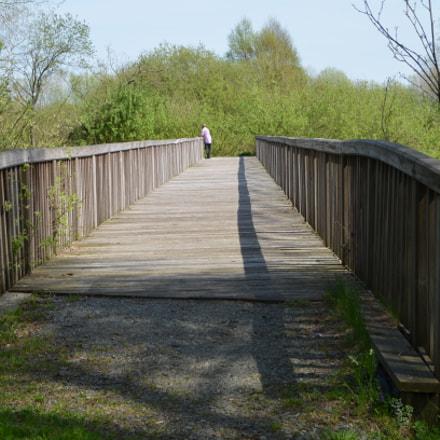 Wooden bridge, Nikon D5100