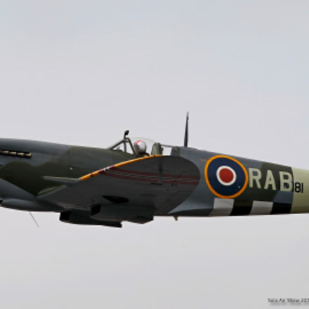 Spitfire, Canon EOS-1D MARK IV, Canon EF 100-400mm f/4.5-5.6L IS II USM