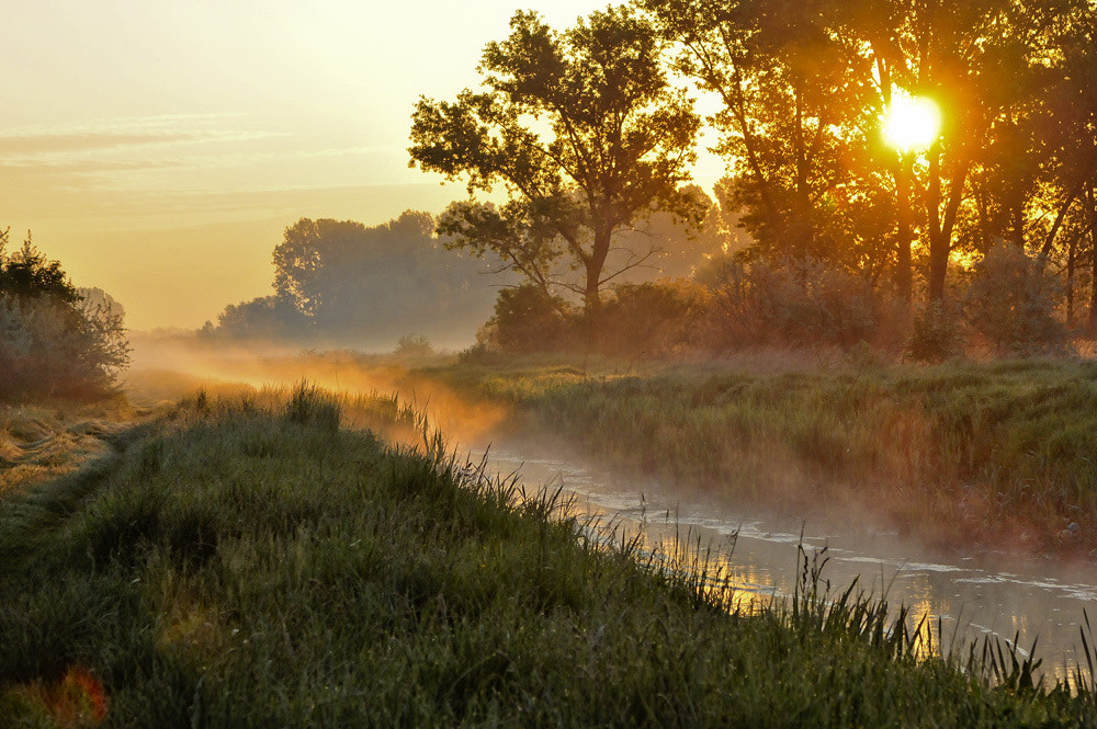 Photograph Morning by Horváth  Tibor on 500px