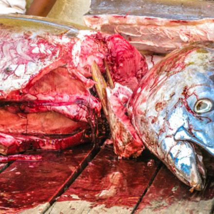 yellowfin tuna cut, Canon DIGITAL IXUS 970 IS