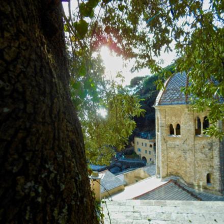 Abbey seen through green, Nikon COOLPIX S6200