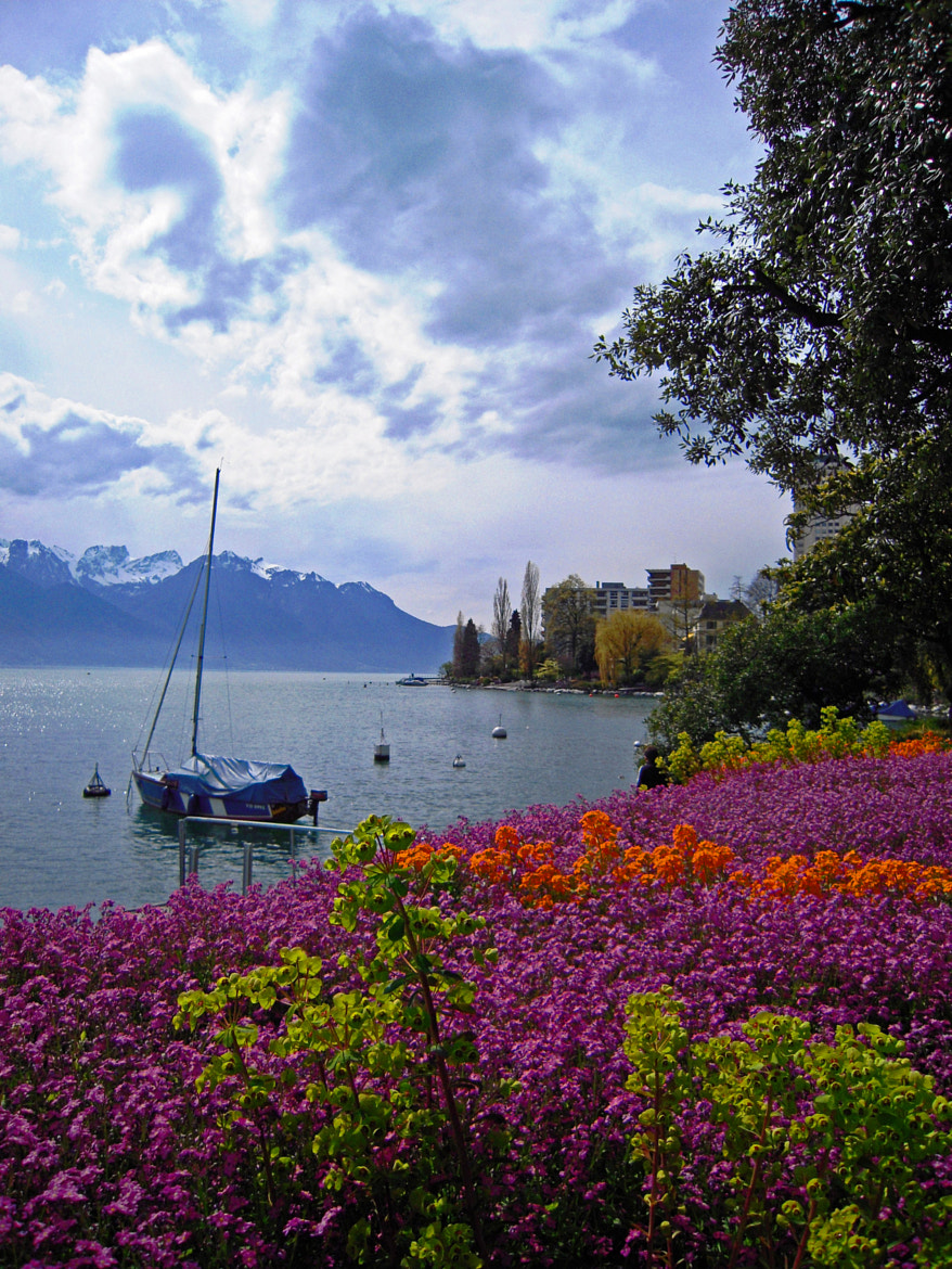 Photograph Printemps à Montreux 3 by Hakki Arican on 500px